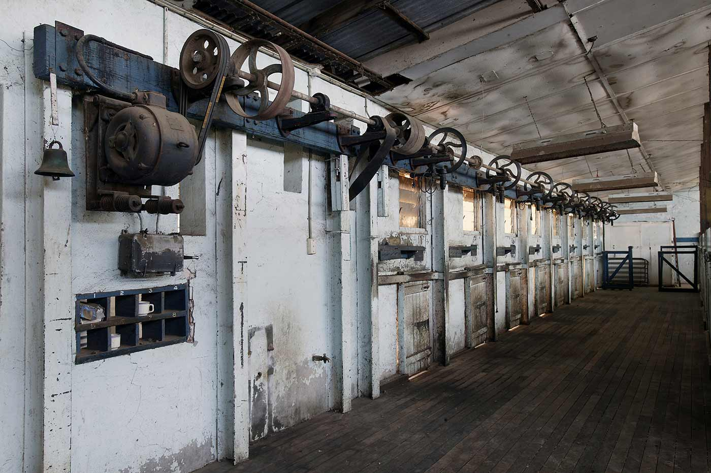 An internal view of Springfield woolshed. - click to view larger image