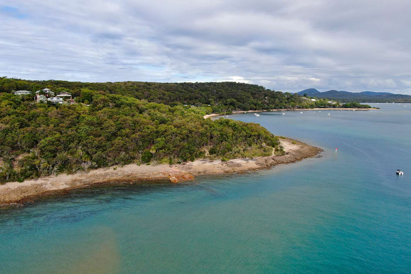 Colour photograph of a shoreline featuring houses amongst dense vegetation and boats docked in the distance. - click to view larger image