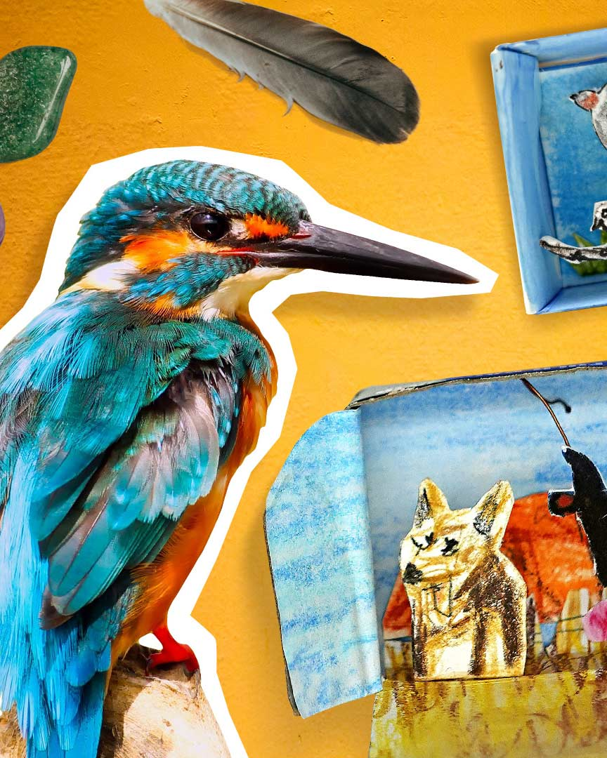 Composite image featuring a colourful bird cut-out and a diorama featuring birds.