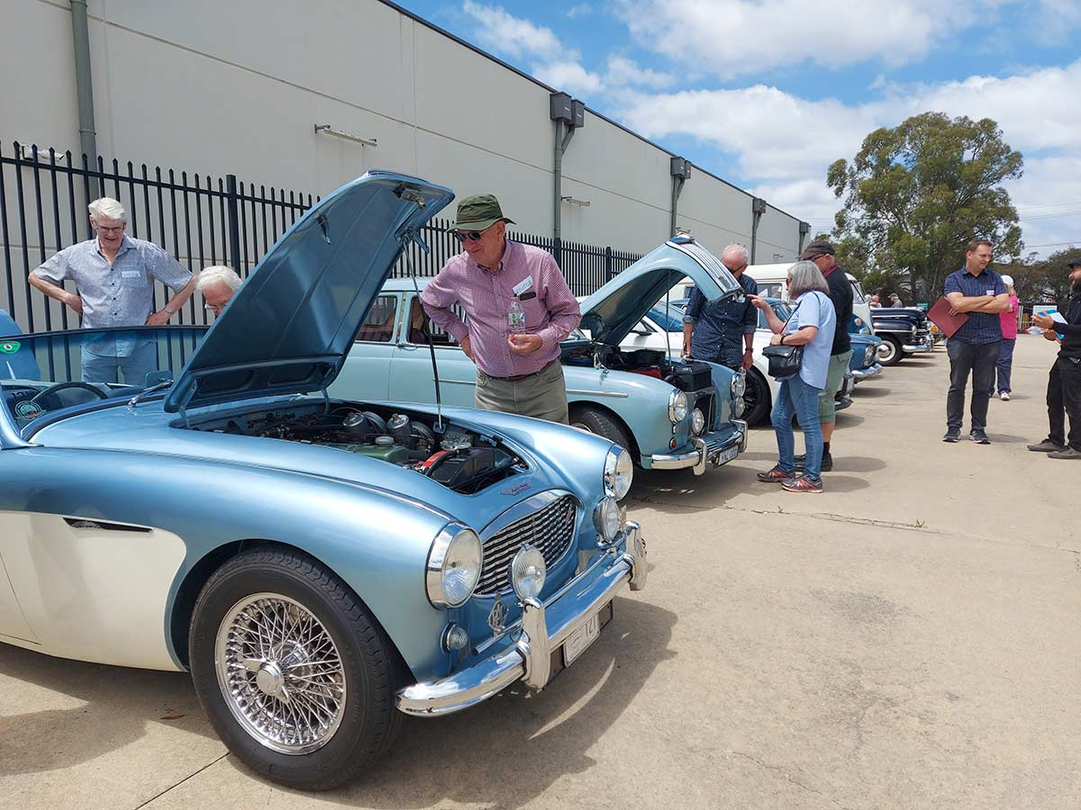 Visitors are inspecting vintage cars on display, some with their bonnets propped open to reveal their engines. - click to view larger image