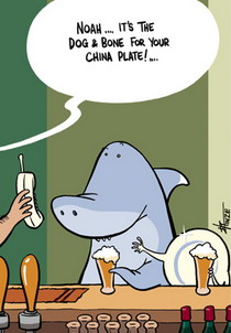 Cartoon of a Noah (a shark) and his china plate (date) having a beer.