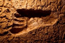 Imprint of a human footprint in hardened clay.