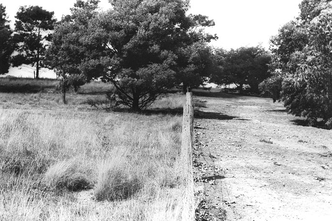 A black and white photo of a fenced field