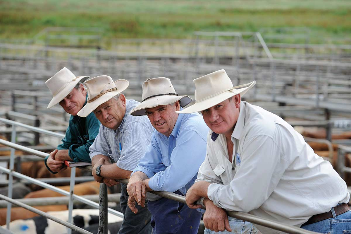 Photograph showing four men leaning forward with forearms resting on a metal fence rail. Each of the men wears an open-collared shirt and stockman's style hat. Their heads are inclined to the right. The backs of various coloured cattle and a series of metal cattleyards and green grass form the backdrop.