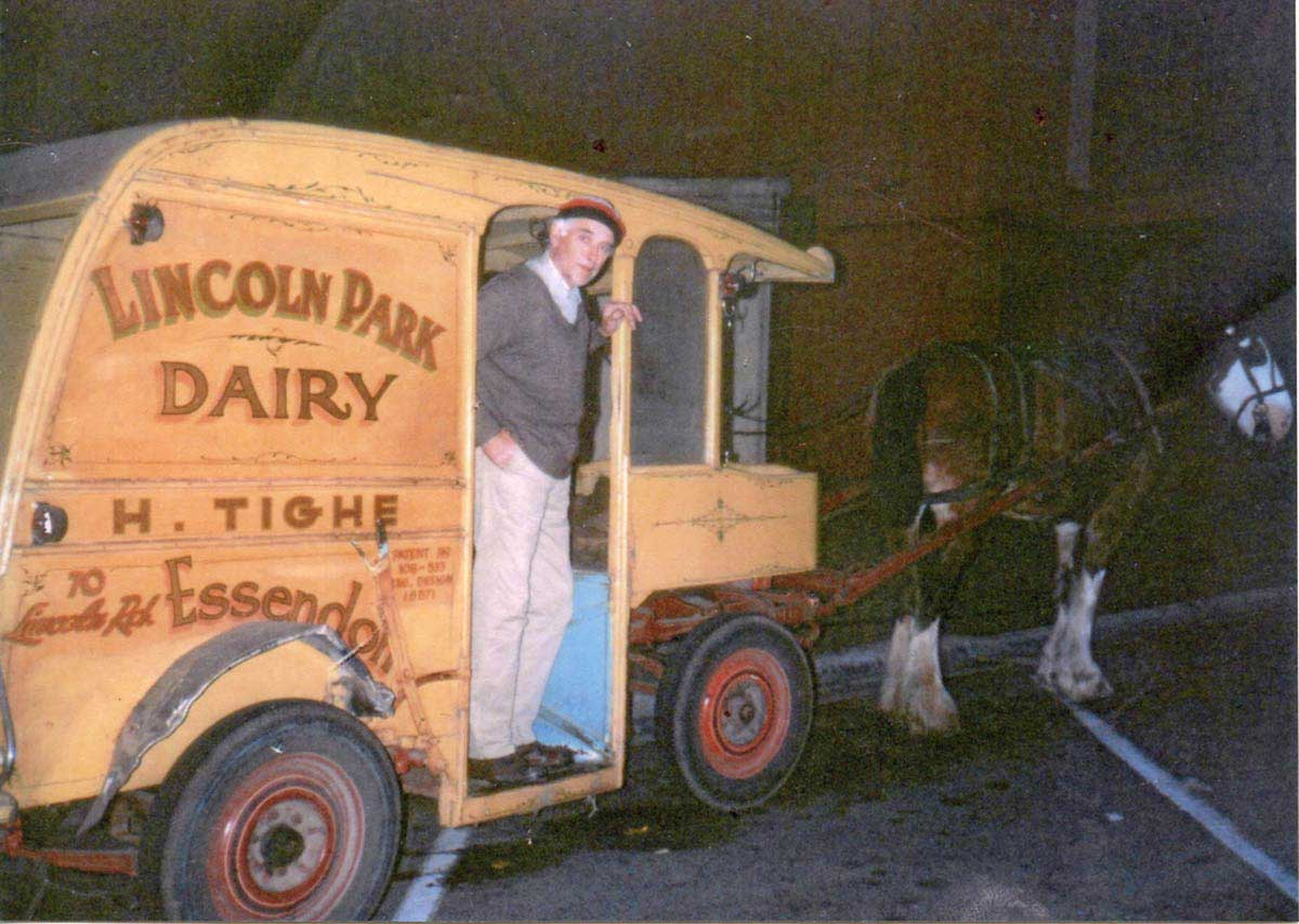 Colour photograph showing a man standing in the front section of a yellow wagon, being drawn by a Clydesdale horse. - click to view larger image