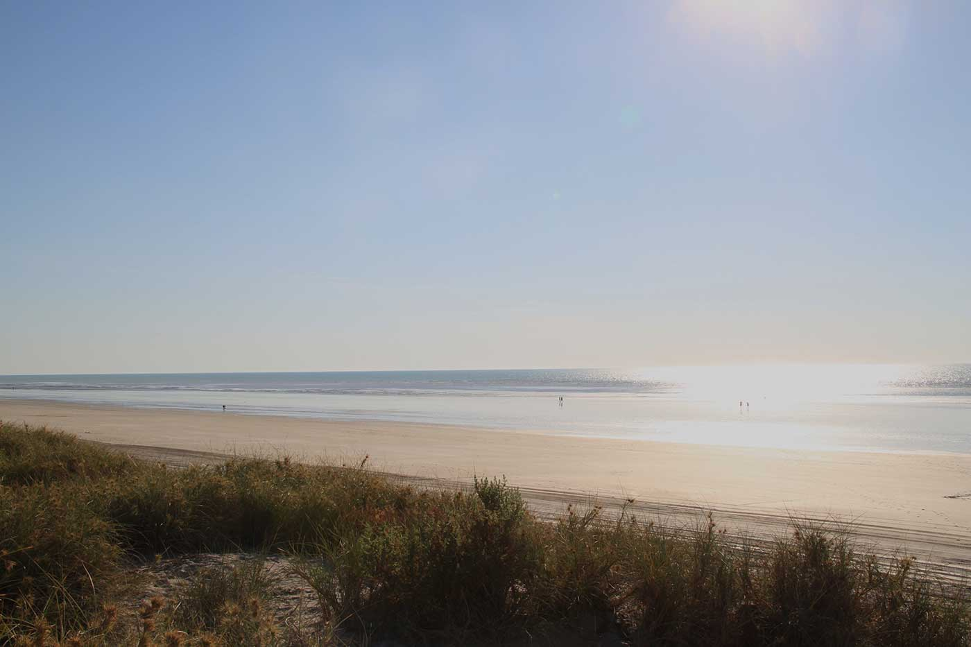 Colour photograph showing a broad stretch of beach with water and smooth sand stretching to low dunes. - click to view larger image