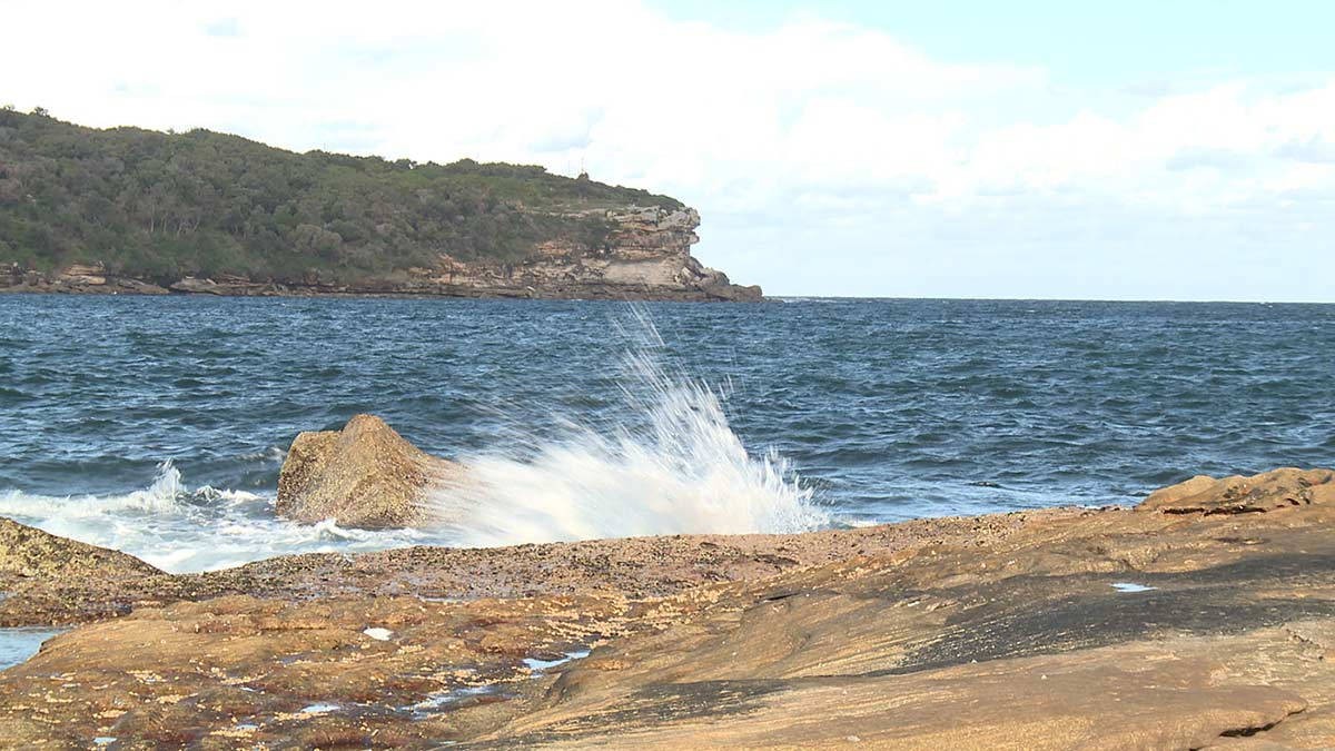 Coastal area featuring tree covered cliff edge in background and waves splashing onto rocks in foreground.