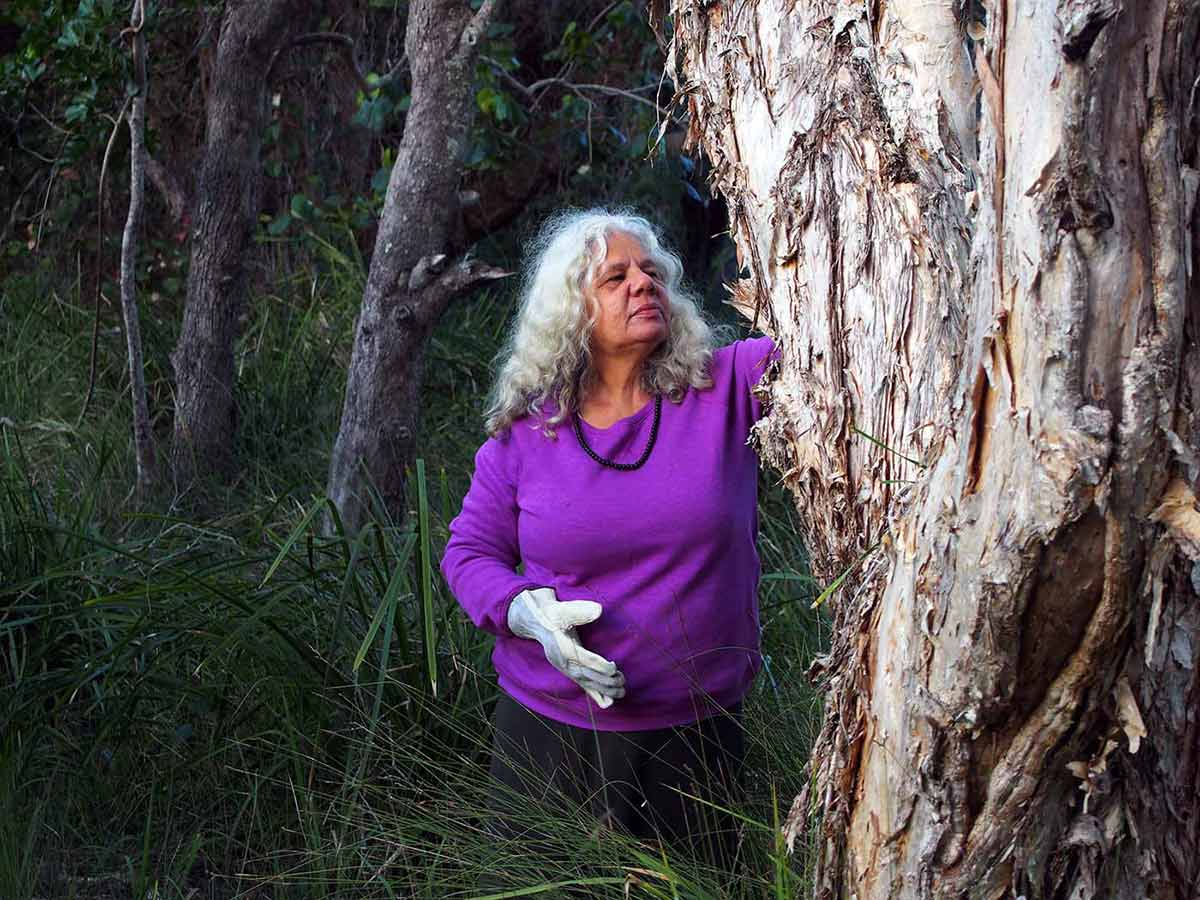 A woman with long grey hair inspects a gumtree in a forest.