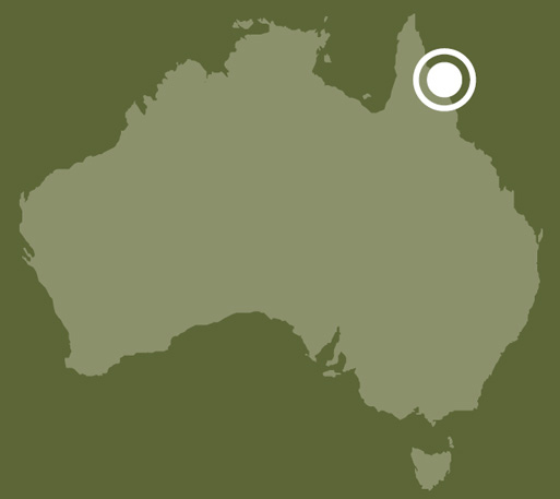 A map of Australia showing the location of Rockingham Bay, Queensland.