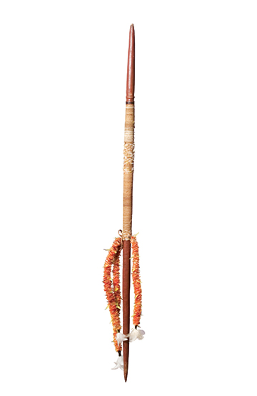 A colour photograph of an Australian Indigenous digging stick. The stick stands one one end. It has sharpened ends and three decorative strings made from feathers tied to it. The end sections are painted brown and appear to have been waxed. String has been tied around the middle of the stick. - click to view larger image