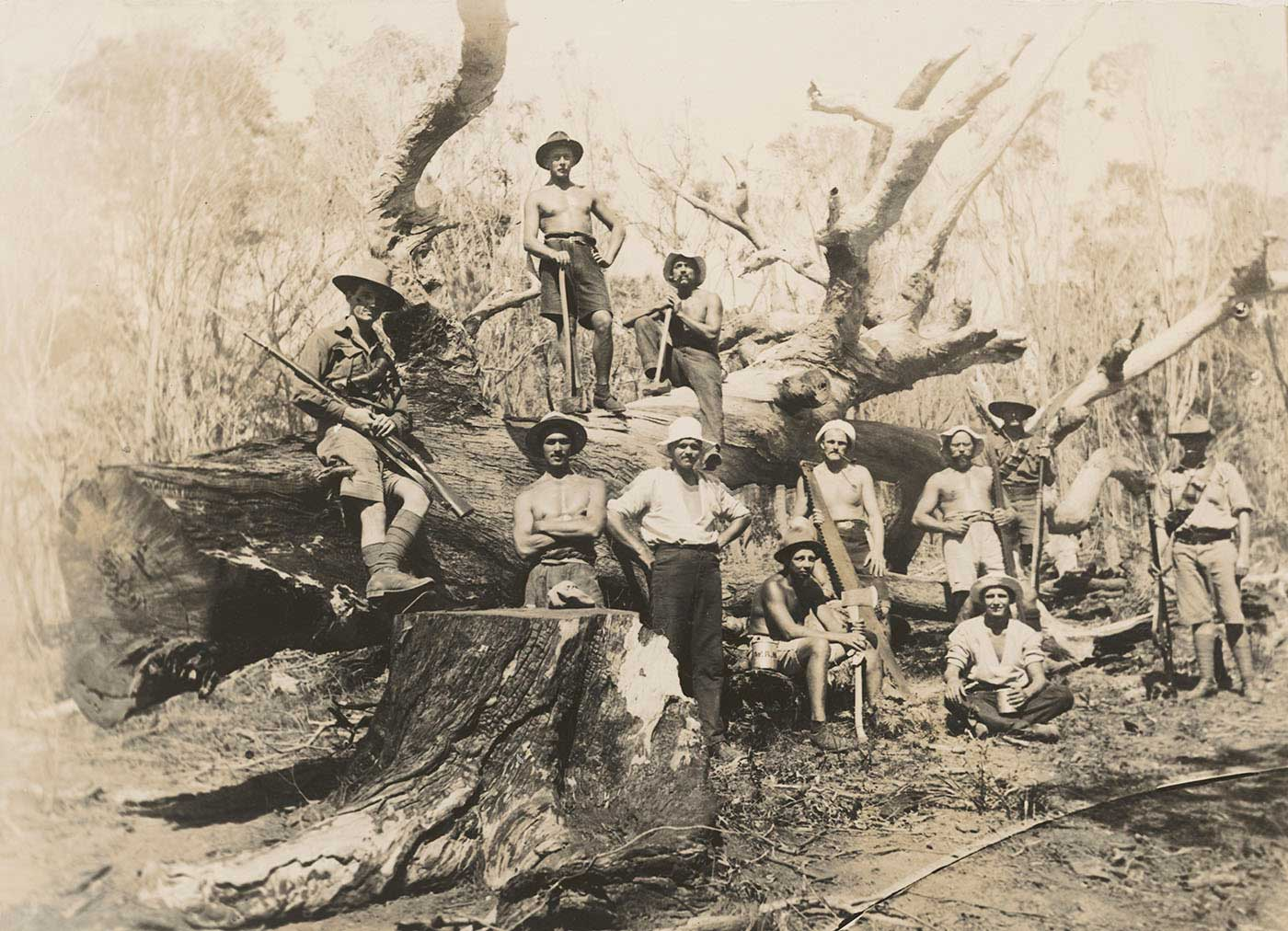 Black and white photo of men with axes, some shirtless posing on and in front of a large fallen tree.