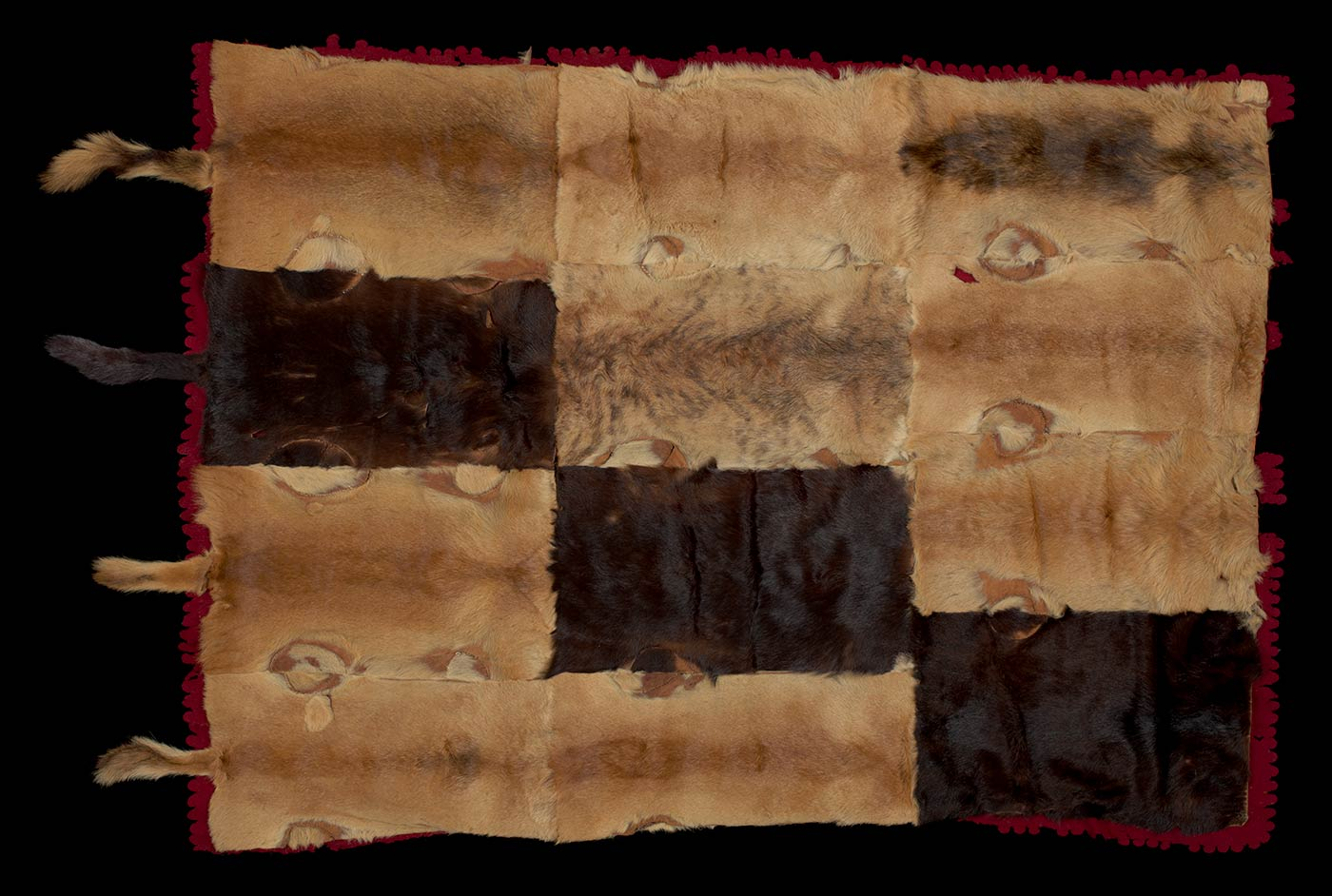 Buggy (carriage) rug made from 12 rectangle-cut Dingo skins backed with maroon felt. The felt has a scalloped edge and is detailed with yellow woven cord which is sewn around the edge and looped at the corners. One end features four hanging dingo tails.