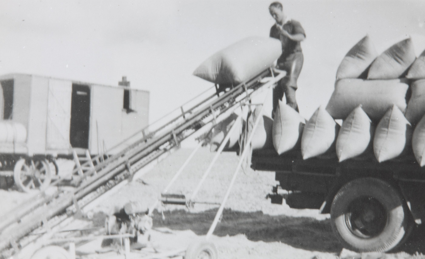 Max Croker loading bags of freshly cut chaff onto a truck using a pulley near Wagga Wagga. - click to view larger image