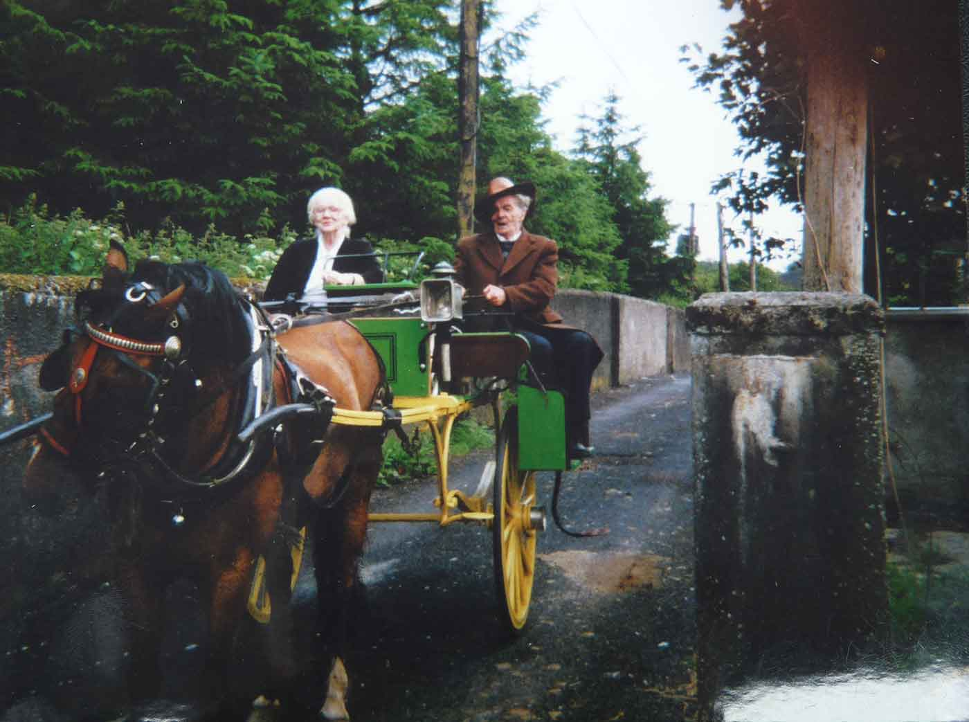 An elderly man and woman are travelling down a country town lane on a horse-drawn carriage.