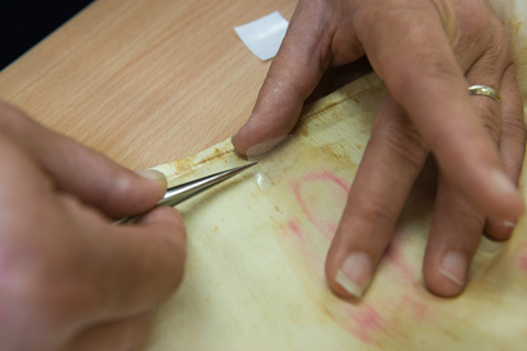 The silk repair is positioned over the back of the weak area on the sleeve. A piece of silicone release film is positioned over the silk backing.