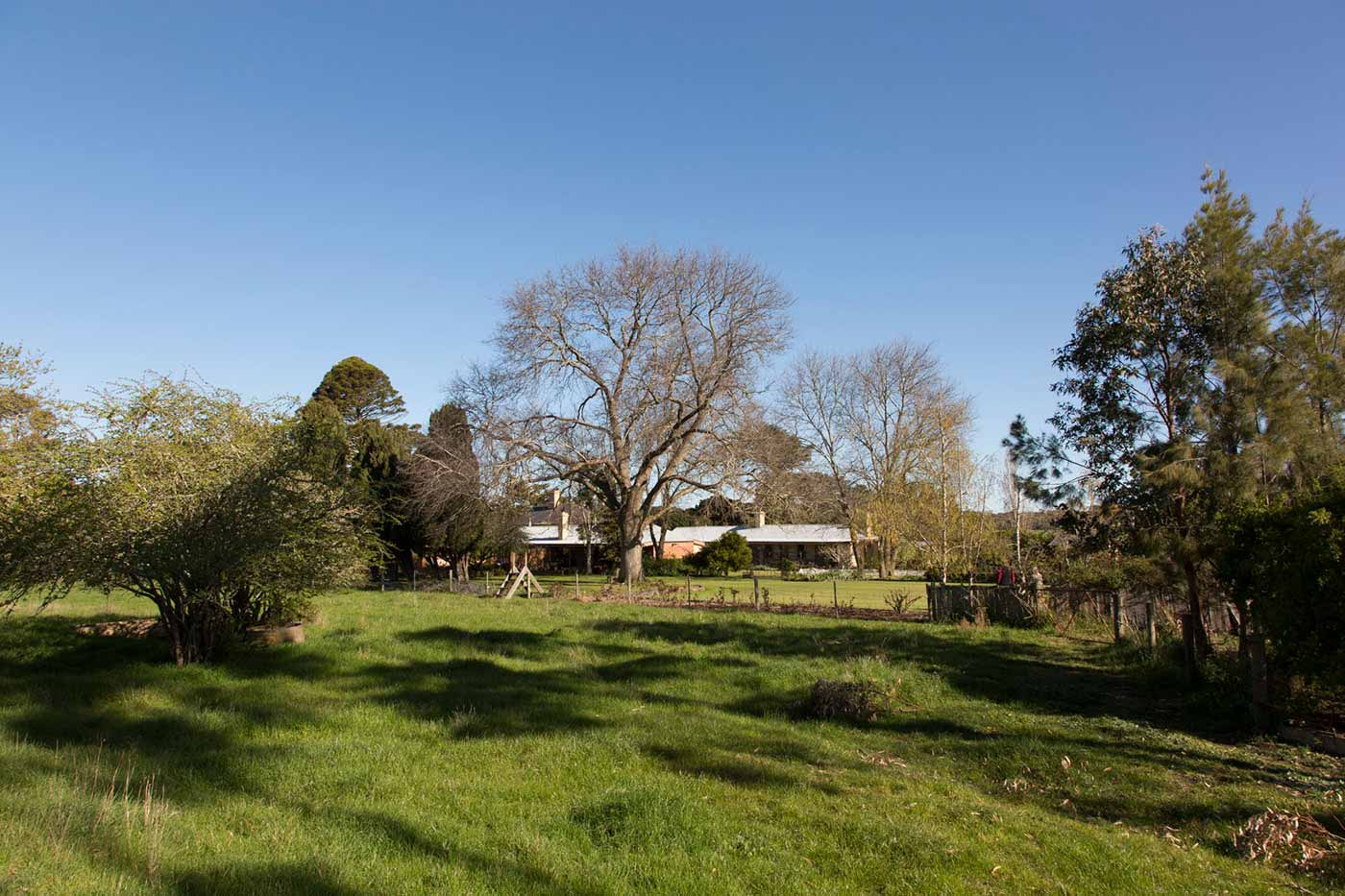 A photo of very green, fertile land with a homestead in the background surrounded by a variety of trees and fences. The sky is blue and cloudless.