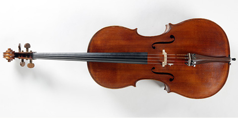 Front view of a violoncello.