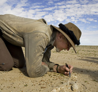 Researcher examining the ground in the desert.