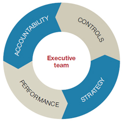 Doughnut chart divided into four equal sections labelled: 'Accountability', 'Controls', 'Strategy', 'Performance'. The centre of the doughnut is labelled 'Executive team'.