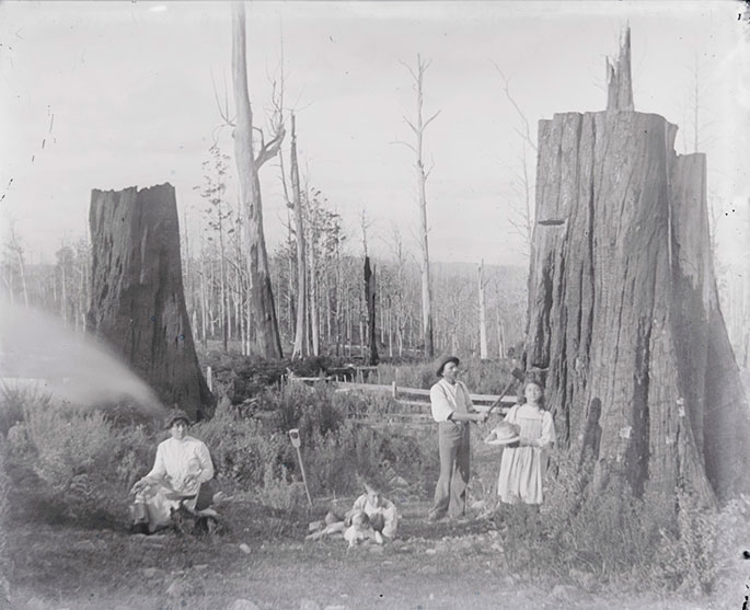 Family shot posing outside between two large tree stumps. A woman sits to the left of the frame, a young boy lies down at centre, alongside a dog. To the right, a man poses with an axe resting at the base of a towering tree stum,p, and a young girl holds a large sun hat at her side.