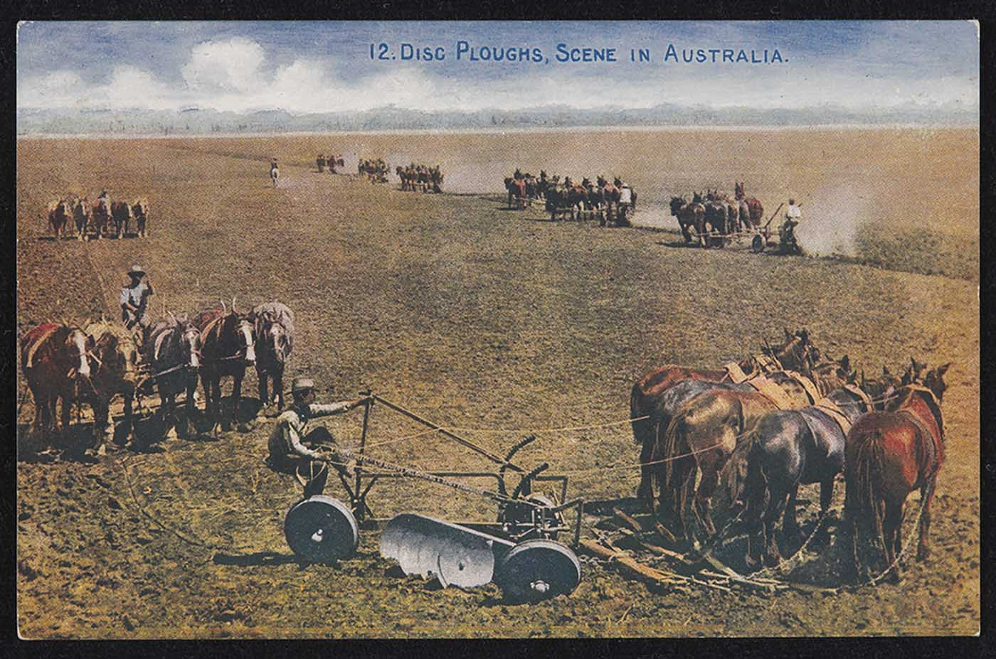 Colour image showing a man sitting on a plough, which is being pulled by five horses. Four other plough teams are visible in the distance, across a paddock. - click to view larger image
