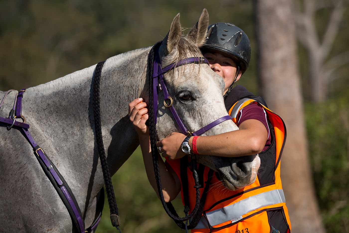A woman wearing a riding helmet and bright orange safety vest cradles a horses head in her arms.  - click to view larger image