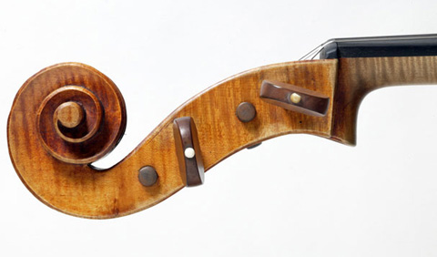 Left side view of a violoncello pegbox.