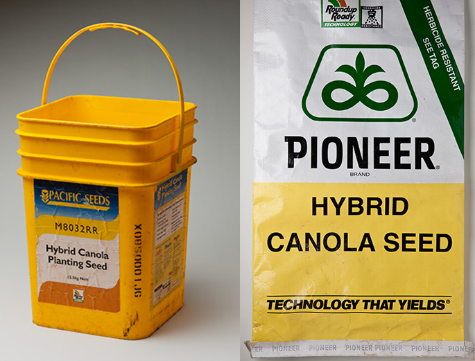 Pictured left is a yellow bucket labelled 'Pacific Seeds Hybrid Canola Planting Seed'.  Pictured right is a sack labelled 'Pioneer Hybrid Canola Seed, Technology that Yields'.
