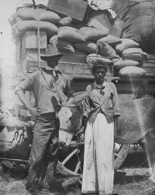 Black and white photograph showing an Aboriginal man and woman standing with a donkey in front of a heavily-laden wagon. The man wears a hat and the woman smokes a pipe.
