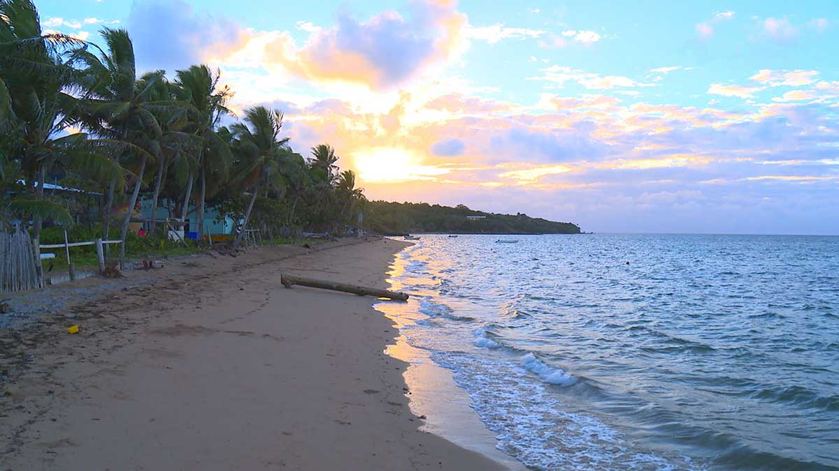 A photo of a coconut tree lined beach with sunsetting in the background and thick clouds growing in the distance. There is a large log lying on the sandy beach and a small collection of buildings hiding behind the coconut trees. The most obvious is the light blue coloured building closest to the beach.
