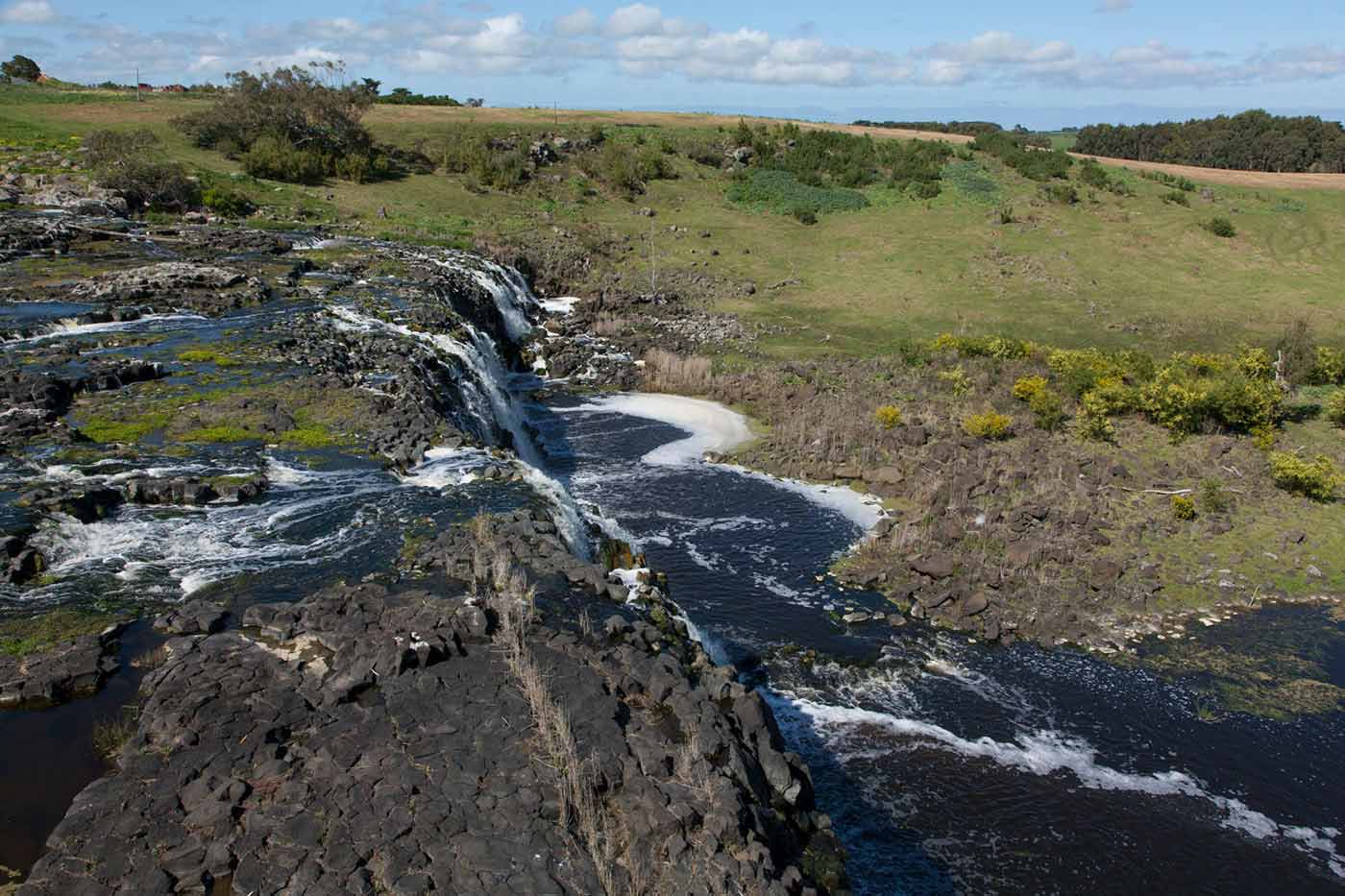 A colour photo of a green leafy landscape with a stream running through it at Warrnambool region, Victoria.