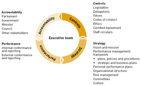 Flow chart indicating the responsibility of the Executive team by way of accountability, performance, strategy and controls.
