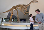 two boys stand in front of a dinosaur replica