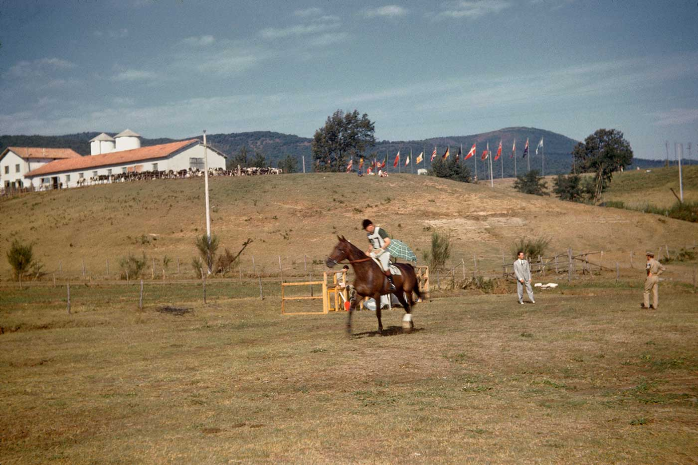 Neale and Mirrabooka  at the cross-country event, Rome Olympics, 1960. - click to view larger image