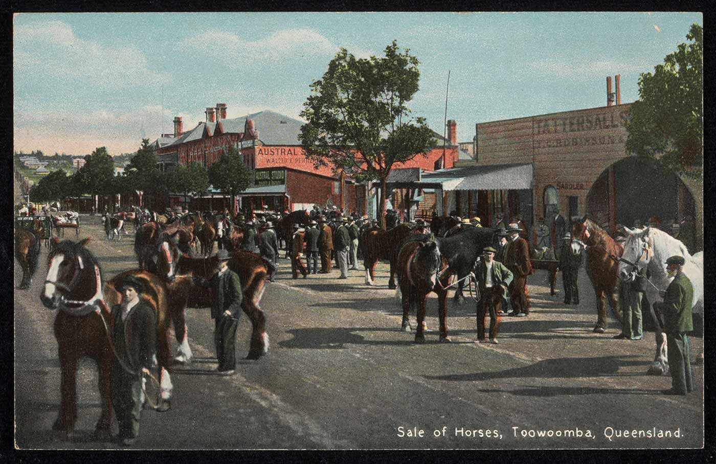Colour photograph of a group of men holding horses, in a paved street of a town. At the centre of the postcard, another group of men stands in a semi-circle, with their backs to the camera, facing a horse that is being paraded before them. - click to view larger image