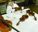 Conservator Patrya Kay surveying the stringed instruments